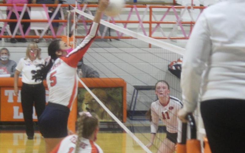 Lady Lions keep up pace with district wins