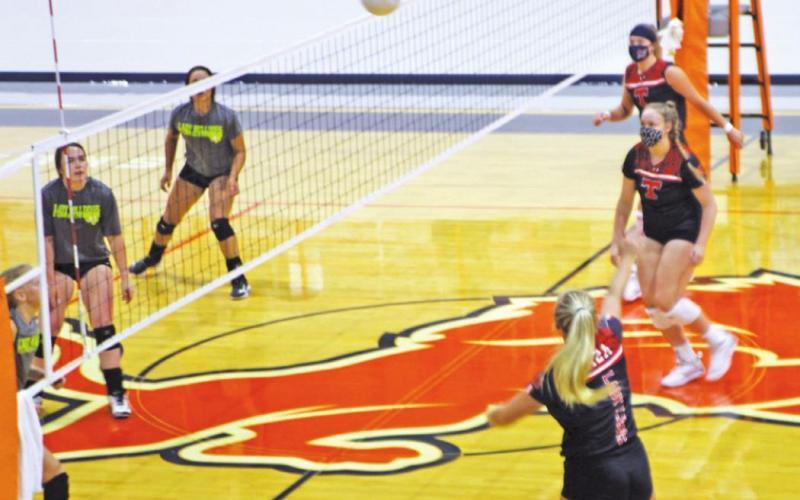 Lady Lions starts 2020 volleyball season