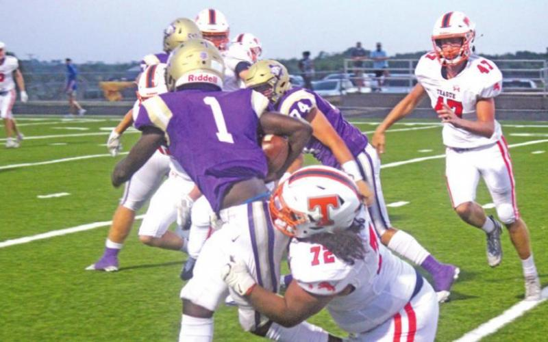 Lions fall to Panthers, defending state champs