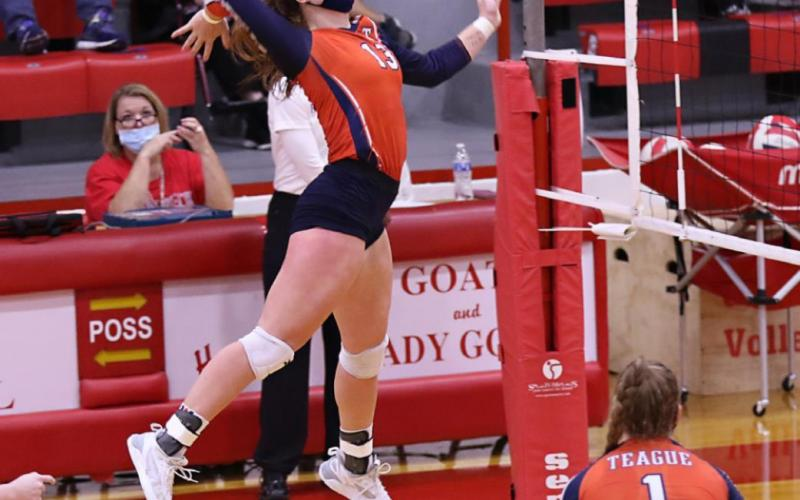 Lady Lions go down in four sets